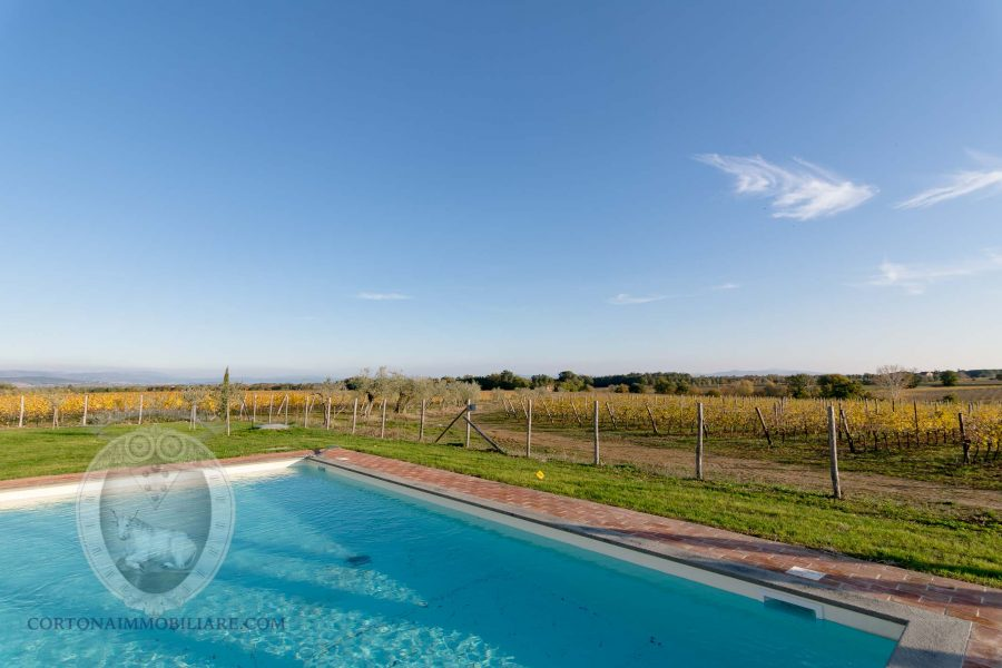Country house in the vineyards - Swimming pool