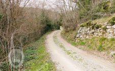 Colonica indipendente a poca distanza da Cortona